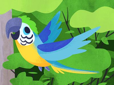 Lil Macaw jungle macaw bird cute art illustration