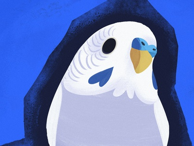 Pippin the Budgie kidlitart parakeet cute art illustration bird budgie