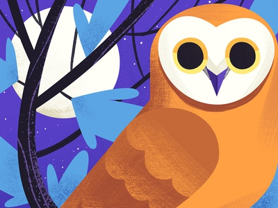 Night Owl bird owl kidlitart cute art illustration