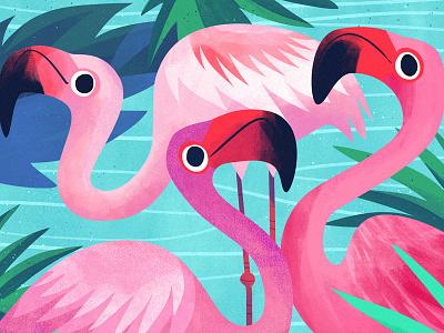 Flamingo kidlitart animal bird pink flamingo cute art illustration