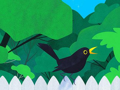 Blackbird animal animals green artwork photoshop kidlitart bird cute art illustration blackbird