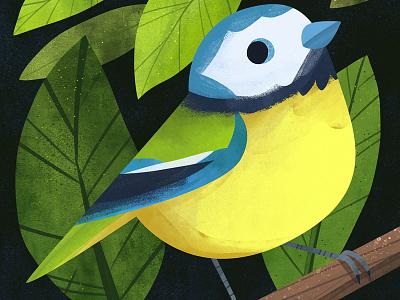 Lil Blue photoshop animals animal bird cute art artwork illustration