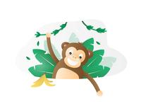 Animal - Monkey 🐵