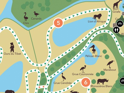 African reserve of Sigean map zoo reserve sigean map carte animal animals animaux ours bear duck canard pélican marabout rhinoceros rhinocéros grue trajet circuit toilets toilettes pique-nique parcours vector afrique africain africaine