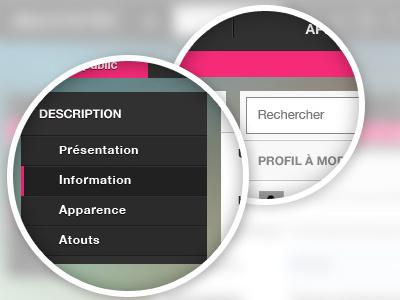 Vertical menu vertical menu bar myspace pixel perfect form magnifying glass retina social network reseau pro art arts tools dashboard ui ux user interface design website web button picture profile