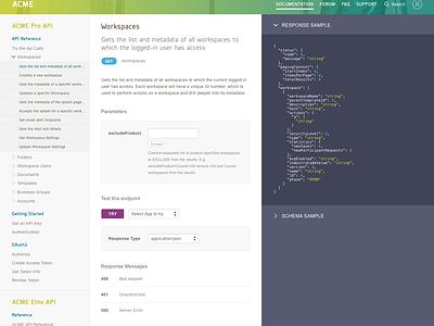 Developer Portal concept panel ui portal developper