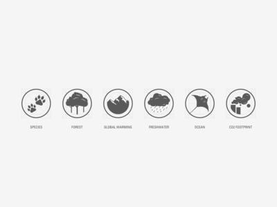 WWF 10th anniversary Icons