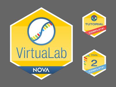 NOVA Labs | Badge sketches