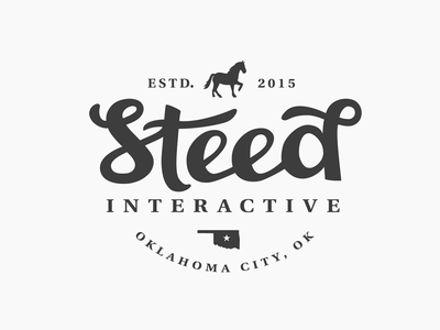 Steed Interactive - Personal Branding brand mark logo lettering oklahoma city western horse flat agency