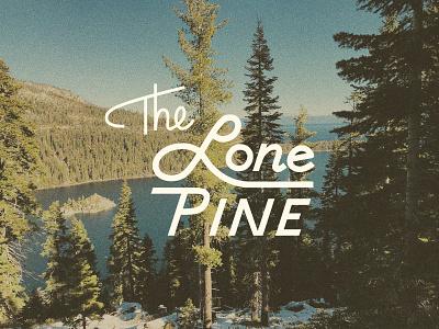 Lone Pine logo vintage branding logo trees texture hand lettering typography type design retro