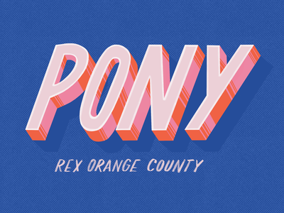 Top 10 Albums of 2019 / 8. Pony - Rex Orange County procreate letters music texture hand lettering drawing album art type typography illustration design