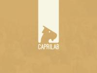 Caprilab