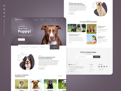 Pet Adoption - Landing Page Exploration ux user interface user experience graphicdesign ui typography addict graphics branding design addictgraphics