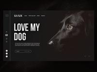 🐶Love My Dog |Daily Ui Design
