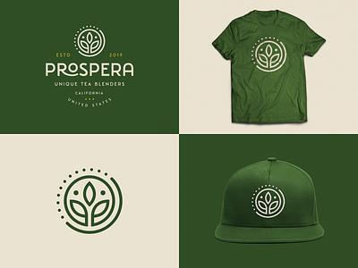 Prospera Tea Branding leaf leafs nature green tea icon brand logo branding design