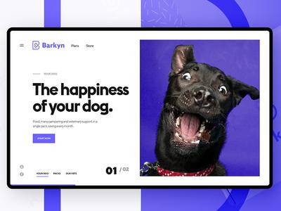 Barkin Landing Screen barkyn dogs dog flat webdesign web ux ui design