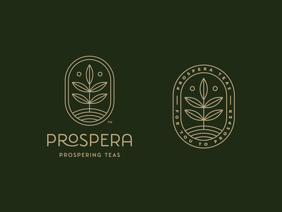 Prospera Tea vector teas tea branding logo design