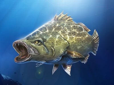 The Sevil Gadus | Digital Painting digital sketch art fish art paint