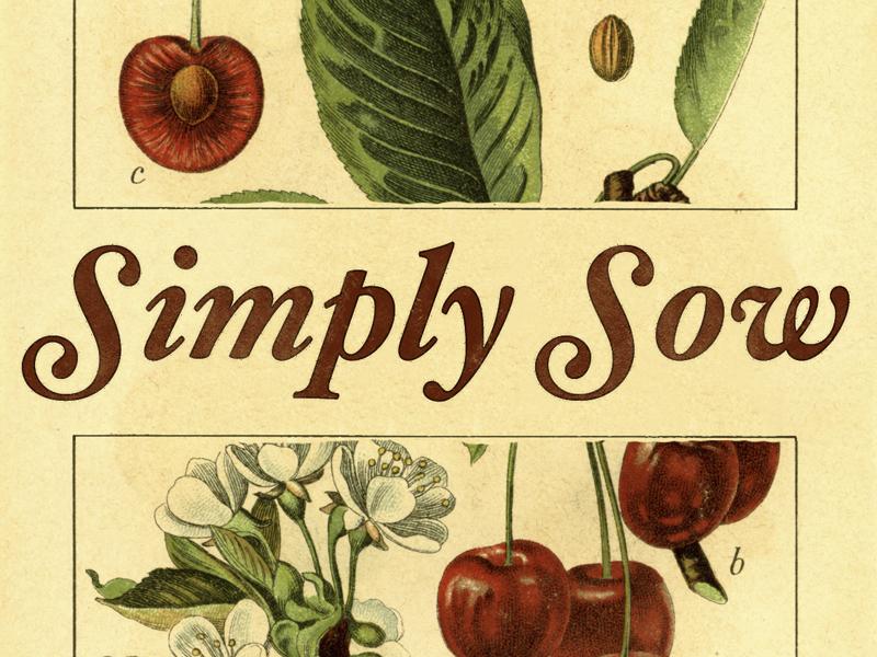 Simply Sow series idea vintage simply sow package seed series christian jesus