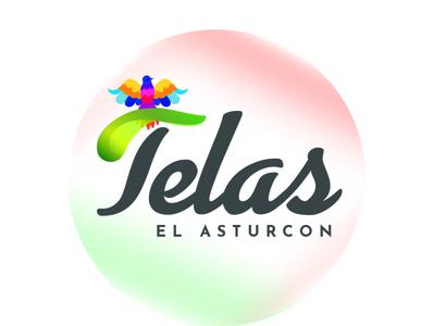 Telas El Asturcon typography vector flat photoshop identity illustration design branding illustrator logo