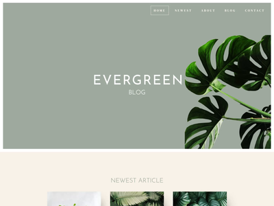 Evergreen Blog