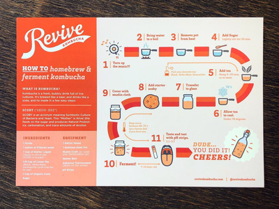 Revive Kombucha Infographic maker diy revive illustrations icons marketing collateral infographic kombucha