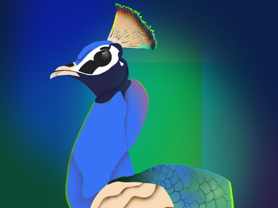 The BIRD ipadpro procreateapp procreate bird design illustration