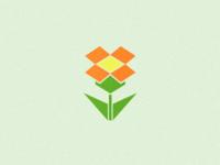 Dropbox rebound - Flower