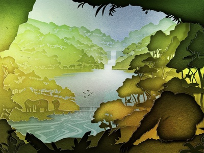 National Geographic Jungles aftereffects vector design illustration 2d