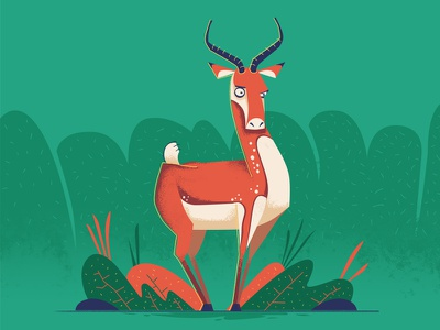 Antelope 2d vector character design design illustration