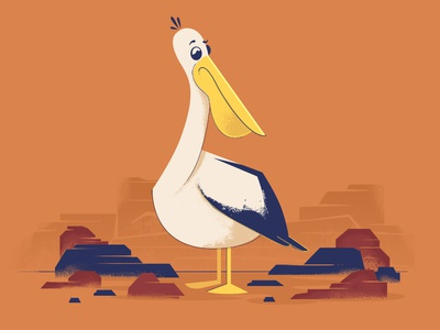 Pelican vector character design illustration 2d