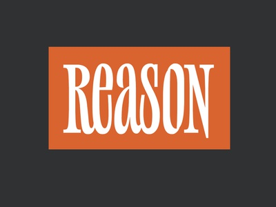 Reason design letters type font logo typeface typography lettering