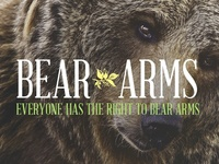 Stupid Logo - Bear Arms