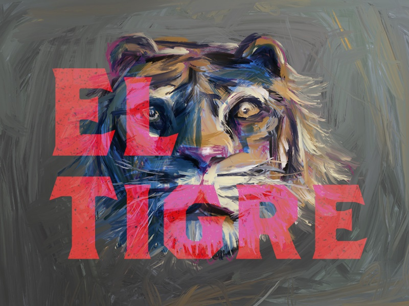 El Tigre journal font tigre el paint illustration tiger painting digital 4 procreate