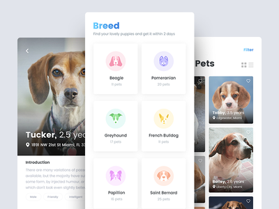 Pet Finder Mobile Application location android ios puppies dog breed pet