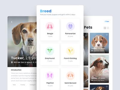 Pet Finder Mobile Application