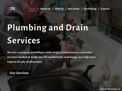 Plumbing Website Development Company ux branding ui websitedevelopment website design website developer website development company