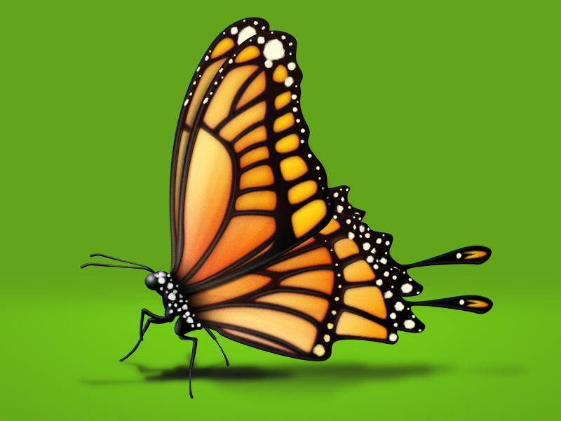 Butterfly for Baidu Search New Vision-02 butterfly ui icon