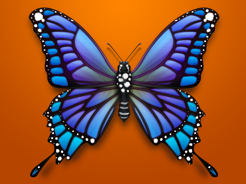 Butterfly for Baidu Search New Vision-03 butterfly ui violet insect icon