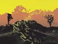 Joshua Tree Visual