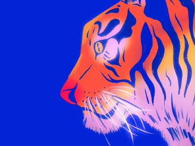 Neon Tiger animation design procreate colors vector illustration drawing