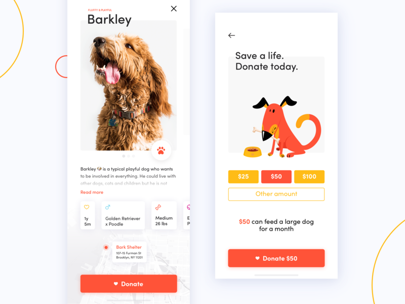 Dog Donation App Concept ios miquido clear swipe concept ui ux cards iphone x mobile donation adopt dog pet app
