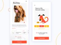 Dog Donation App Concept