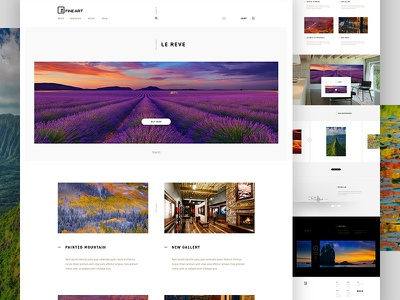 Peter Lik Concept clean art artist shopify photographer photography store shop ecommerce e-commerce