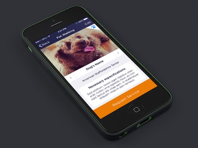 Pet Service button dog service ios ios7 app iphone ui ux argentina aerolab lucas