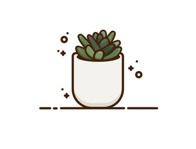 Succulent web icon graphic design vectorart minimal vector illustration graphic graphicdesign design