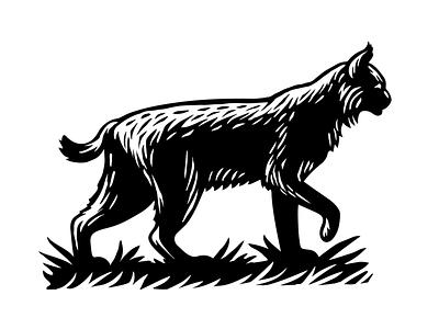 Bobcat cat bobcat wildlife animal linocut woodcut scratchboard vector illustration