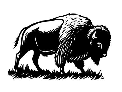 Bison buffalo bison wildlife animal woodcut adobe photoshop adobe illustrator vector linocut scratchboard illustration