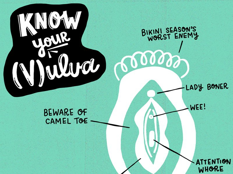 Know Your Vulva Infographic hand lettering hand-lettering handlettering illustration lettering