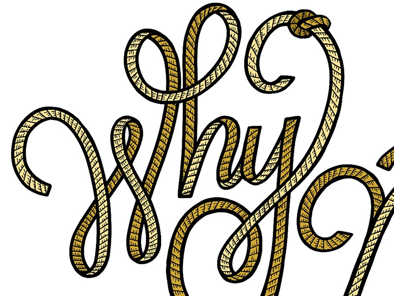 Why Not In Progress script cursive typography type handlettering lettering